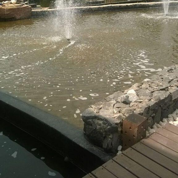 Zoo water exhibit